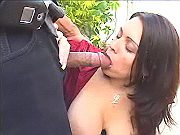 Chubby mummy in fuck and blow orgy
