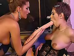 Two beautiful lesbians in stockings use long dildo